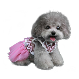 Daphne Party Dress