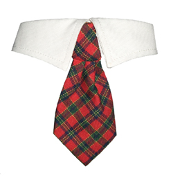 X'mas Shirt Collar